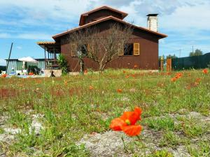 Wood house with swiming pool near Lisbon best beaches