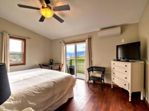 King Room with Vineyard View