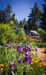 Photo of Day Dream Farm Cottage