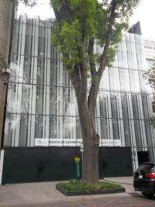Photo of Polanco T40