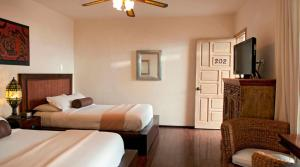 Junior Double Suite with Two Double Beds