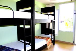 Bed in 8-Bed Dormitory Room with Shared Shower