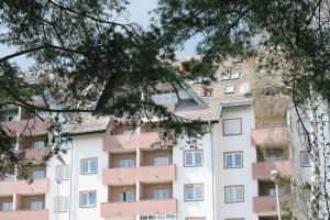 Trim Apartments, Apartmány  Zlatibor - big - 27