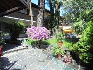 Garni Florida, Hotely  Ascona - big - 10