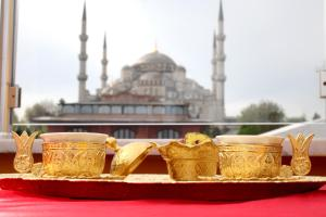 Hotel Mevlana Hotels, Istanbul