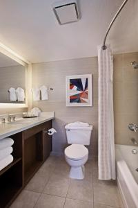 King Suite Accessible with Roll-In Shower Non-Smoking
