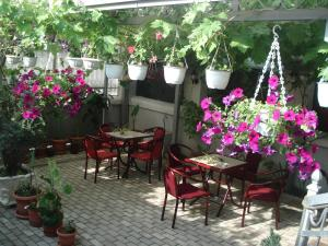 Tokin House, Pensionen  Bitola - big - 37
