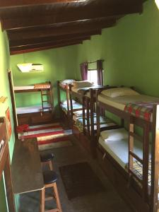 Bunk in 4-Bed Dormitory Room