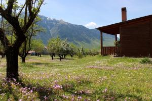 Villa Rustica, Apartments  Konitsa - big - 34