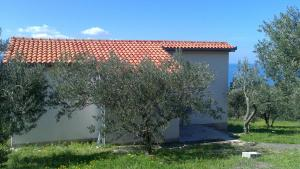 Holiday house Oliveta