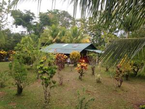 Photo of Osa Jungle Cabin