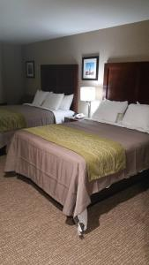 Standard Double Room with Two Queen Beds