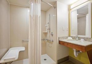 Deluxe King Room with Roll in Shower - Hearing Accessible