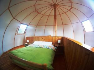 Dome with Terrace (6 Adults)