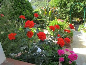 B&B Palazzo a Mare, Bed & Breakfasts  Capri - big - 48