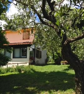 Villa Monsagrati Alto, Дома для отпуска  Monsagrati - big - 31