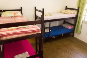 Bed in 4-Bed Mixed Dormitory Room Draco