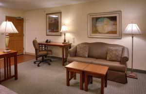King Suite with Sofa Bed - Disability Access