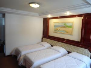Triple Room (3 single Beds)