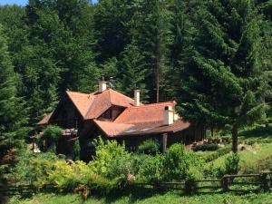 Photo of Holiday Home Tonkina Kuća