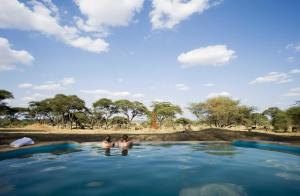 Photo of Sanctuary Swala