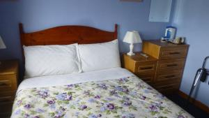 Lawndale House B&B, Bed and Breakfasts  Galway - big - 8