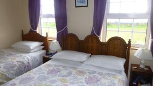 Lawndale House B&B, Bed & Breakfasts  Galway - big - 7