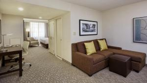 Junior Suite with King Bed and Sofa Bed