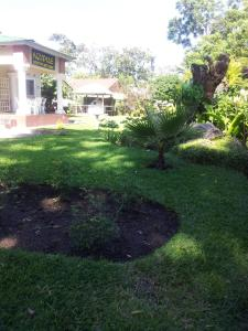 Nzipile Executive Guest House, Bed & Breakfasts  Chingola - big - 21