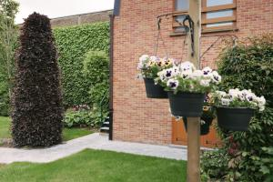 B&B Ter Vesten, Bed and Breakfasts  Ypres - big - 30