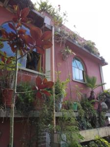 Photo of Apartamentos El Frutal