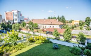 Grand'Or Exclusive Apartment, Appartamenti  Oradea - big - 10