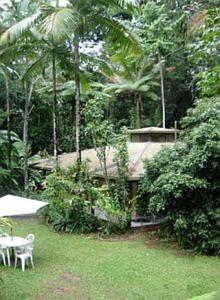 Daintree Deep Forest Lodge