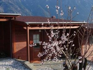 Villa Rustica, Apartments  Konitsa - big - 9