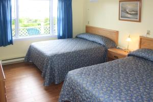 Suite with Two Double Beds + One Double Sofa Bed