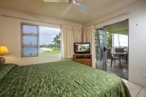Two-Bedroom Apartment with Ocean Front View