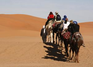 Camel Trek Bivouac, Luxury tents  Merzouga - big - 25