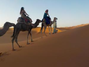 Camel Trek Bivouac, Luxury tents  Merzouga - big - 5