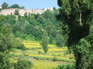 B&B Villa Paradiso, Bed & Breakfasts  Urbino - big - 24