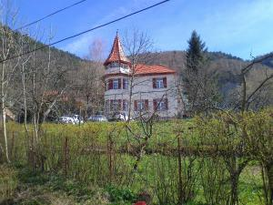 Photo of Castel Iezer
