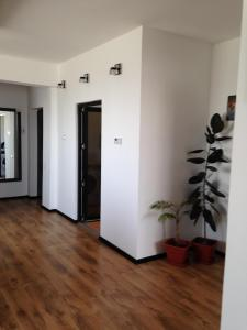 Photo of Mirrors' Apartment Mamaia Constanta