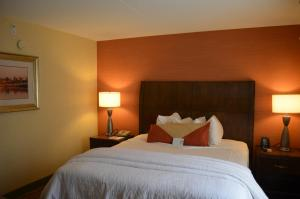 King Room with Disability Access - Hearing Accessible
