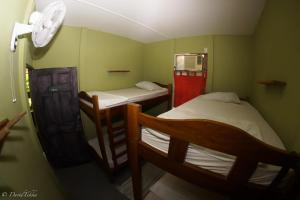Bed in 4-Mixed Dormitory Room with fan