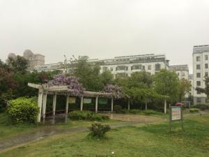 Photo of Yangzhou Young Traveller Hostel Jinghua City Living Mall