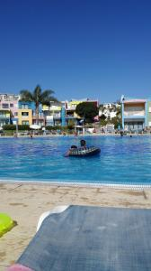 Photo of Swim In Marina Albufeira