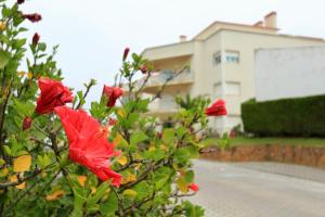 Casas da Villa - Sunset Apartment