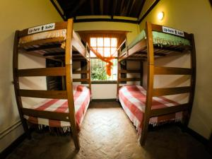Bed in 12-Bed Mixed Dormitory Room with Bathroom