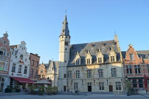 B&B Casa Luna Loft, Bed & Breakfast  Dendermonde - big - 16