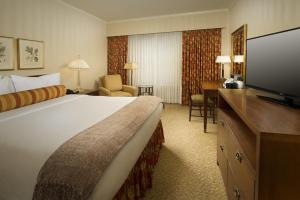Executive Suite Queen Room