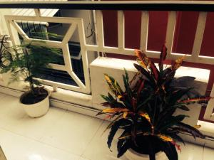 Photo of Trung's Homestay In Ho Chi Minh